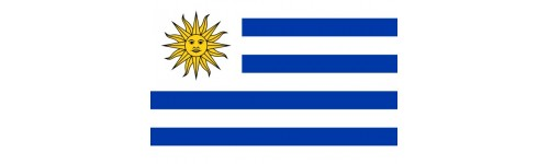 Uruguay Buttons